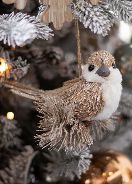 Special Bird Ornaments