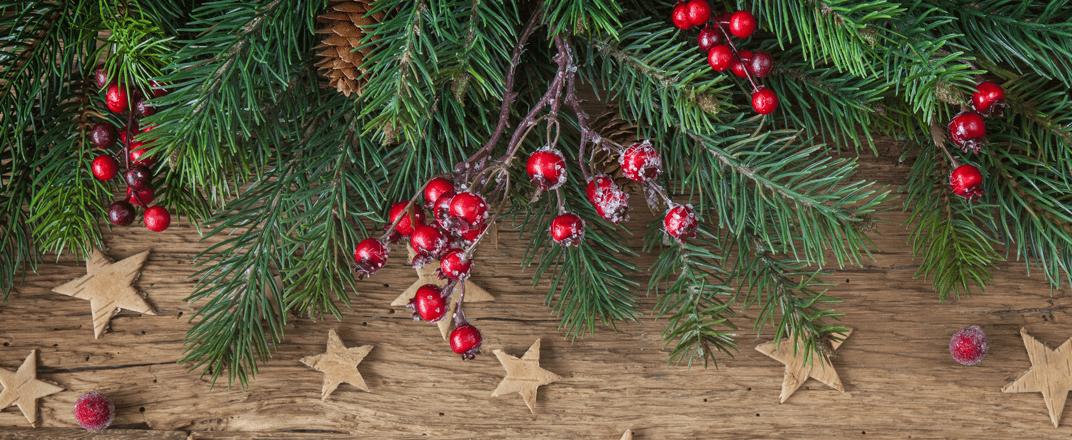 Kerstguirlandes_kerstkransen.png