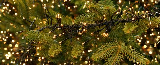 Kerstverlichting.png