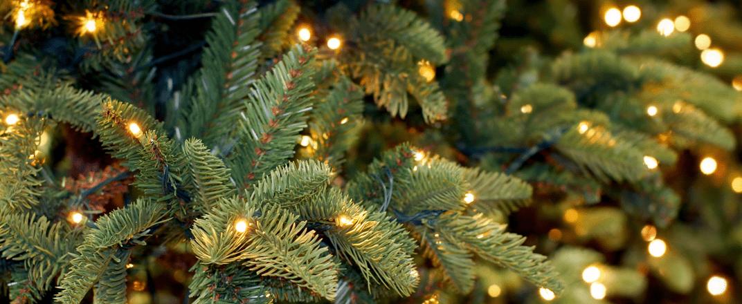 Kunstkerstbomen-met-verlichting.png