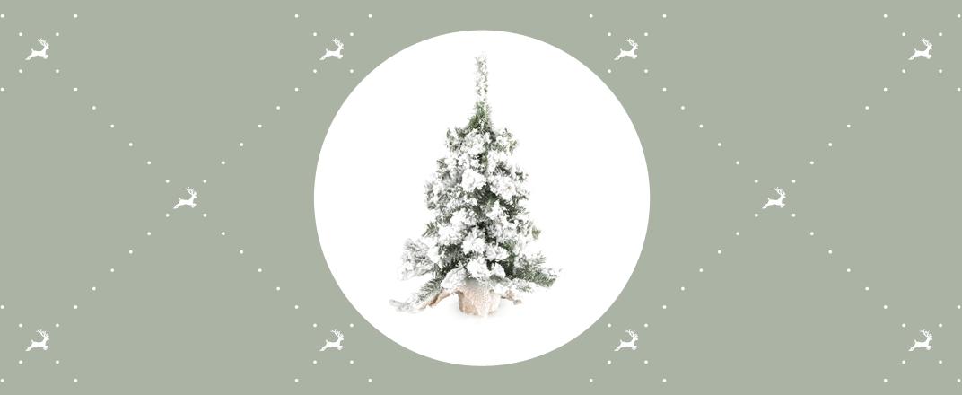 kleine_kerstbomen.png
